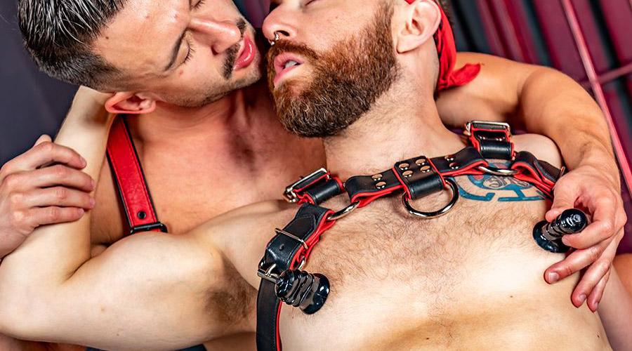 Comprar Pinzas BDSM y ventosas para pezones
